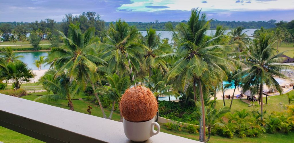 holiday inn resort vanuatu standard room resort pool view coconut drink