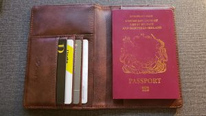 The best travel gear - Passport Wallet 1